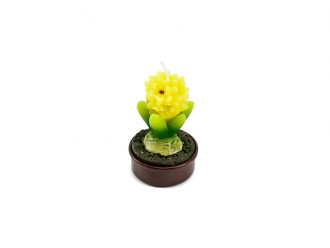 Teelicht Hyazinthe gelb