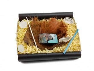 "Geschenkbox ""Türkis"" mit Bananenblatt (antibakterielle Kristallseife) tolle Geschenkidee"