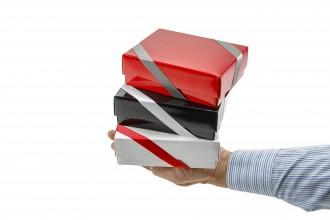 Geschenkverpackung 15x5x11cm