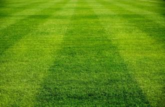 Rasenduft - lass Dein Geschenkset nach frisch geschnittenem Rasen riechen!
