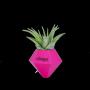 BØK – Minivase mit Magnetbefestigung