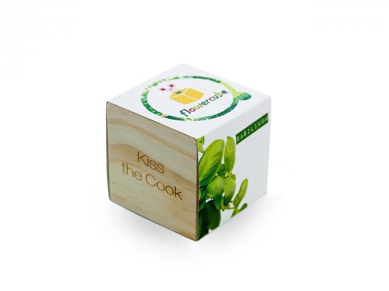 Flowercube *Basilikum* Kiss the Cook - 100% ökologische Pflanze als kleines Geschenk für Sie und Ihn