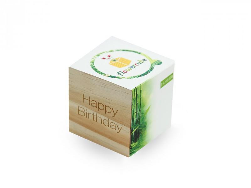 Flowercube *Bambus* Happy Birthday - Ökologische Pflanze (Samen + Wachstumsgranulat) Mitbringsel für Männer und Frauen