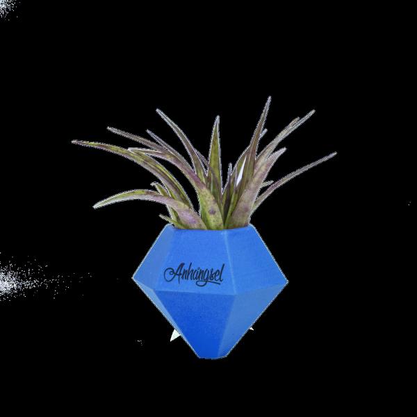 BØK – Minivase mit Magnetbefestigung blau