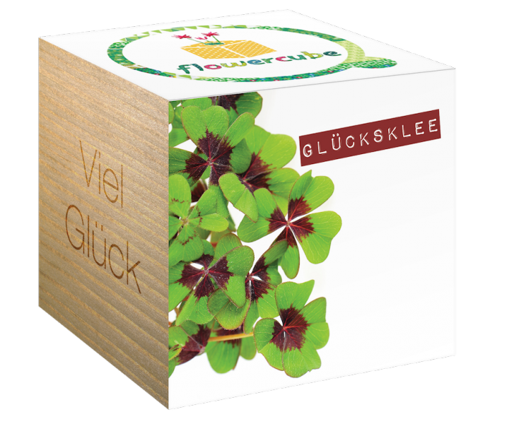 Flowercube *Glücksklee* - Viel Glück - Pflanze baut sich ökologisch ab (Samen + Wachtumsgranulat) - Kreatives Geschenk für Sie und Ihn